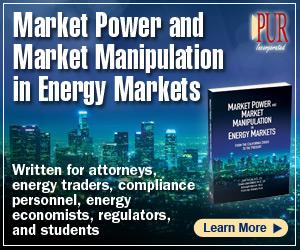 Market Power & Market Manipulation - PUR Books