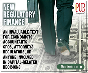 PUF Books - New Regulatory Finance