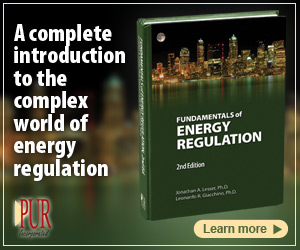 PUR Books - Principals of Energy Regulation
