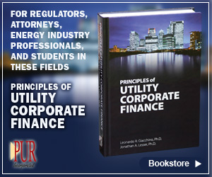 PUR Books - Principals of Utility Corporate Finance